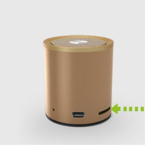 Bluetooth колонка EWA X1 Златна
